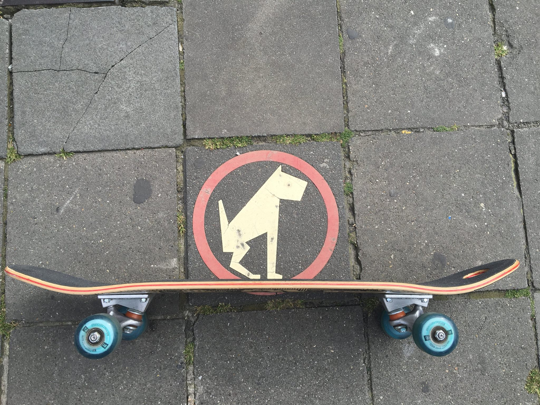 BEV skateboards